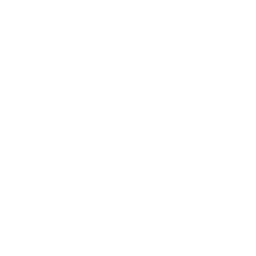 API Management, Application Integration/Middleware, RPA, BPM